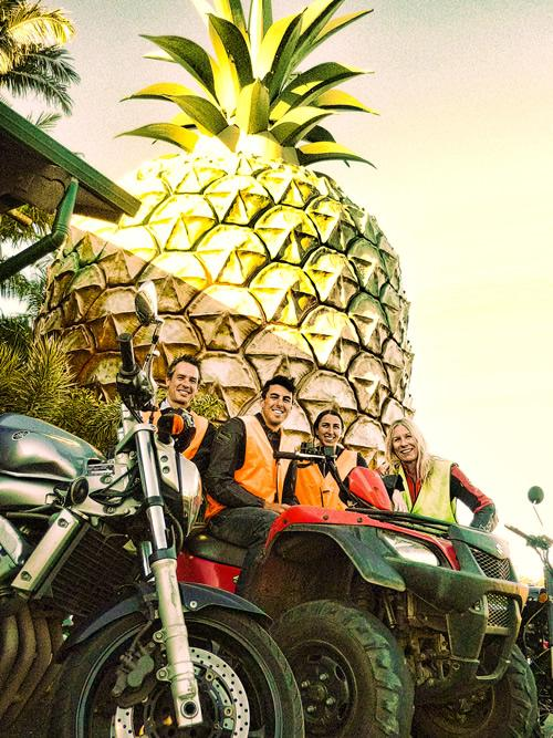 Motorbike Lessons Big Pineapple